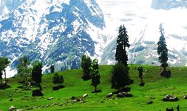 Kashmir 04 Nights Land Package