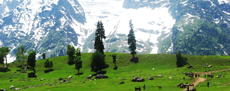 Kashmir 05 Nights Tour Packages From Delhi India
